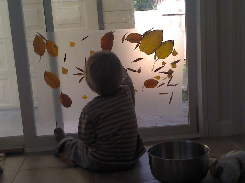 2011-11-22_11-25-26_470(1)